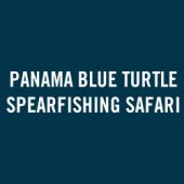 Panama Blue Turtle Spearfishing Safari