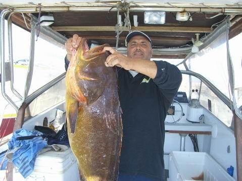 Freccia delle Egadi: Fishing In Sicily