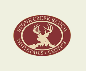 Stone Creek Ranch: Texas Whitetail and Exotics
