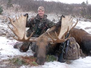 Field Judging Moose